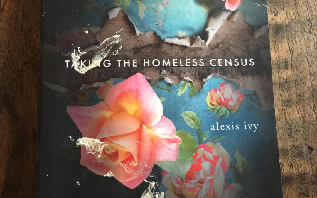 "Alexis Ivy: ""Taking the Homeless Census"""