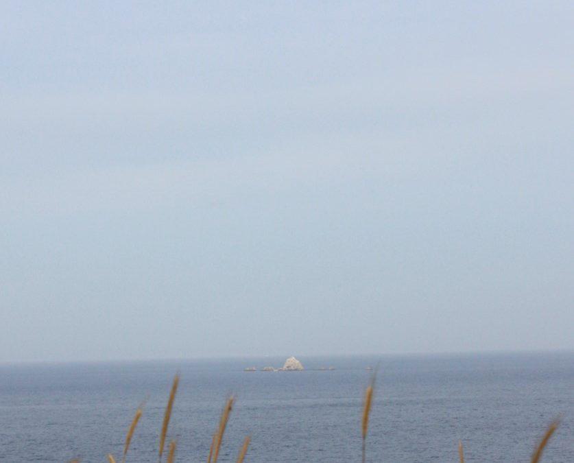 Acropolis Oya Overlooks the Bay